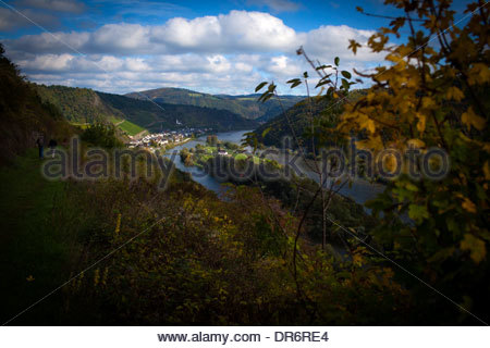 Vigneto con fiume in background, Mosel, Mosella, Hatzenport, Mayen-Koblenz, Renania-Palatinato, Germania Immagini Stock