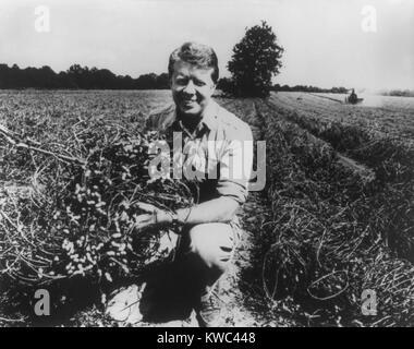 Ex Governatore della Georgia e il futuro presidente Jimmy Carter per la sua azienda di arachidi in 1976. Egli ha Immagini Stock