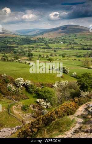 Regno Unito, Cumbria, York, Settlebeck Gill vista da Dales alta via via verso Garsdale Immagini Stock