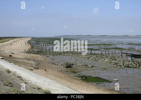 Bassa marea a sud Swale, guardando lungo la parete del mare verso l'isola di Sheppy. Kent Wildlife Trust. Immagini Stock