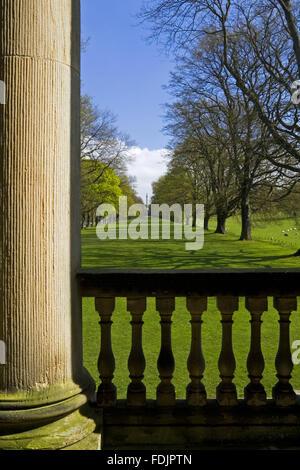 Visualizza in basso la lunga passeggiata o il viale di alberi di quercia dalla cappella a Gibside, Newcastle upon Immagini Stock