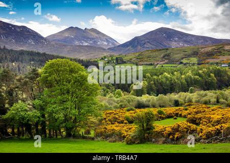 Irlanda del Nord, Co Down, Clanachullion Bridge, Slieve Bearnach e Slieve Meelmore da Shimna River Valley Immagini Stock