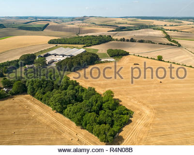 Paesaggio di antenna del raccolto estate farm di frumento e orzo i campi e le balle di paglia Immagini Stock