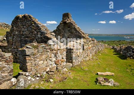 Irlanda, Co Louth, penisola di Cooley, Rooskey, le rovine della casa in abbandonato pre-carestia village Immagini Stock