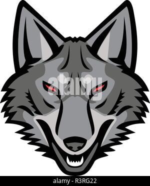 Sport icona mascotte illustrazione della testa di un grigio coyote, un canino originaria del Nord America strettamente correlati al lupo grigio visto dalla parte anteriore sulla isol Immagini Stock