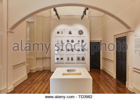 Installazione mediante la Trinnaledi Milano (vari designer) per l'Italia. London Design Biennale 2018, Londra, Regno Unito. Architetto: Vari , 2019. Immagini Stock