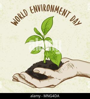 Sfondo con pianta verde in mano umana. Concetto di ecologia per la Giornata mondiale dell'ambiente. Immagini Stock