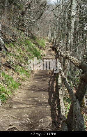 Appalachian Trail a Gap ritrovata, Great Smoky Mountains National Park, il confine della NC e TN. Fotografia digitale Immagini Stock