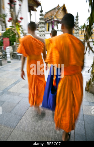 Thailandia, Bangkok, Wat Suthat tempio, tre arancio-derubato, giovane debuttante monaci a piedi attraverso il tempio Immagini Stock