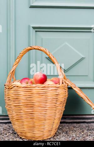 Cestino con mele Immagini Stock
