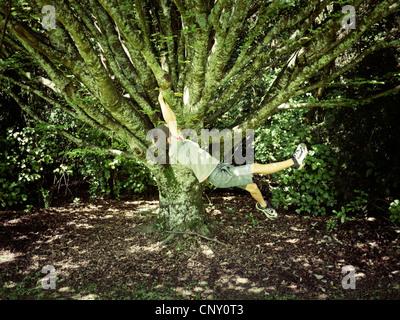 Ragazzo oscilla sul ramo di albero. Immagini Stock