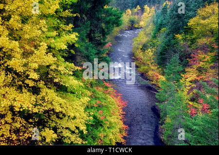 Rogue River e autunno a colori. Rogue River Wild e Scenic River, Oregon Immagini Stock