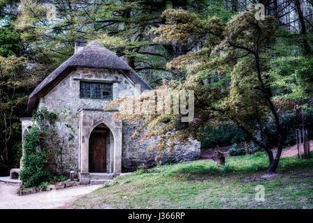 Un cottage con tetto di paglia con le finestre rotte in una foresta scura Immagini Stock