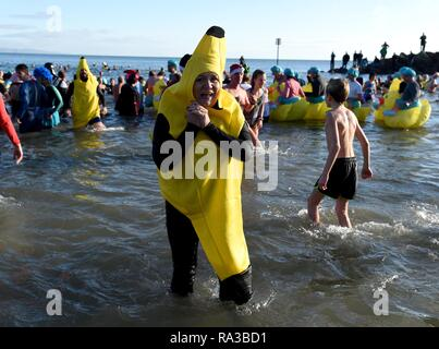 Lyme Regis, Dorset. Il 1° gennaio 2019. Banane, Lyme affondo, nuovi anni nuotare, Lyme Regis, Dorset Credito: Finnbarr Webster/Alamy Live News Immagini Stock