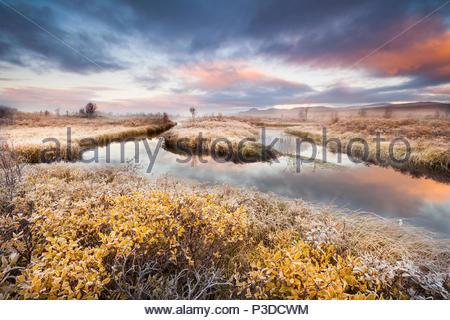 Autunno mattina a Fokstumyra riserva naturale, Dovre, Norvegia. Immagini Stock
