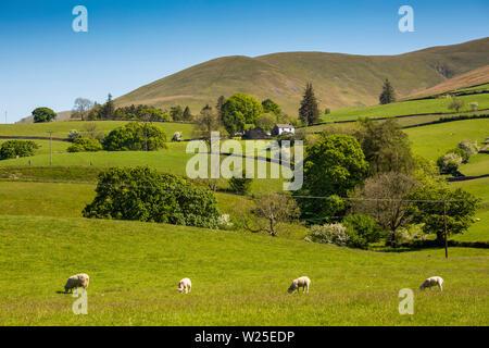 Regno Unito, Cumbria, York, Underwinder, agriturismo a distanza inferiore avvolgitore e Howgill Fells da Marthwaite Immagini Stock