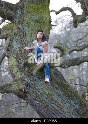 Dai capelli scuri donna seduta nella struttura ad albero Immagini Stock