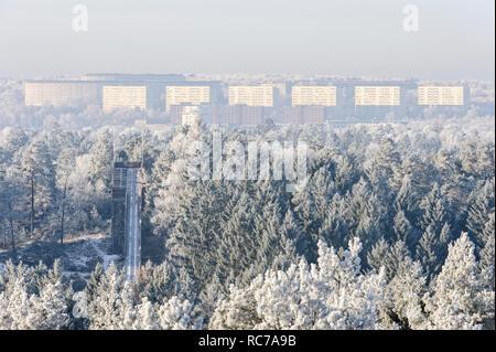 Lo smog oltre il blocco di appartamenti e foresta Immagini Stock