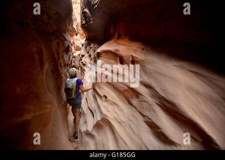 Escursionista visitare Little Wild Horse e Bell Loop Canyon, il parco statale Goblin Valley, San Rafael Swell, Utah Immagini Stock
