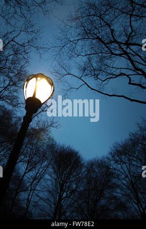 Via la luce nel parco centrale al tramonto in inverno Immagini Stock