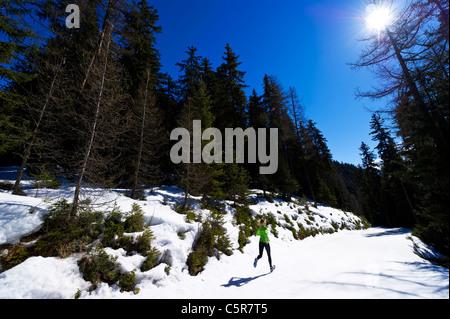 Una donna jogging attraverso una montagna innevata foresta. Immagini Stock