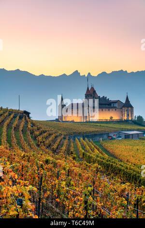 Il castello di Aigle, Aigle, Canton Vaud, Svizzera, Europa Immagini Stock