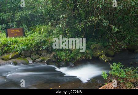 Haena Kauai Hawaii Haena parco dello stato corrente della cascata nella foresta di pioggia North Shore Immagini Stock