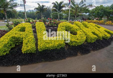 Aloha siepe di erba segno per tutte le Hawaii turisti e visitatori qui in Kauai ma ovunque in Hawaii Immagini Stock