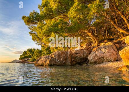 Piccola spiaggia presso Cvitacka vicino Makarska al tramonto, Croazia, Europa Immagini Stock