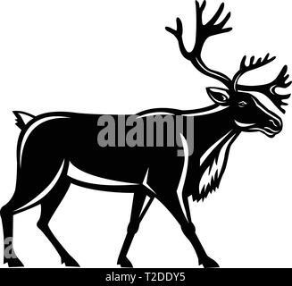 In stile retrò illustrazione di una renna, noto anche come caribù in Nord America, passeggiate visto dal lato su sfondo isolato. Immagini Stock