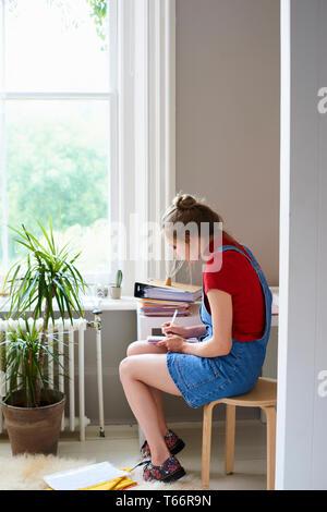 Femmina giovane studente universitario che studia Immagini Stock