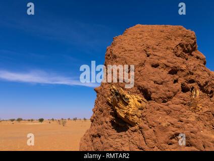 Termite mound in una zona arida, Stato di Khartoum, Khartoum, Sudan Immagini Stock