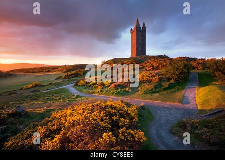 Scrabo Tower al tramonto, Newtownards - Irlanda del Nord. Immagini Stock