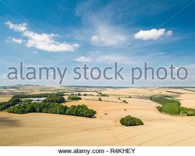 Antenna vista del paesaggio della fattoria di estate di frumento e orzo raccolto nei campi e cielo blu Immagini Stock