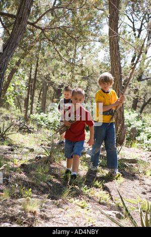 Tre ragazzi la raccolta di legno in una foresta Immagini Stock