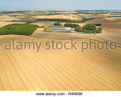 Paesaggio di antenna del raccolto estate farm di frumento e orzo campi Immagini Stock