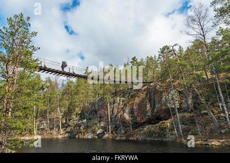 Trekker attraversando un ponte sospeso in Repovesi National Park, Finlandia. Immagini Stock