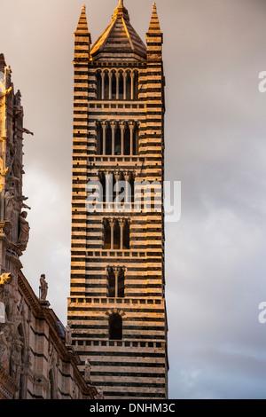Basso angolo vista di una torre campanaria, Cattedrale di Siena, Siena, in provincia di Siena, Toscana, Italia Immagini Stock