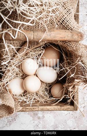Sei uova di organico in un cestello di legno con paglia Immagini Stock