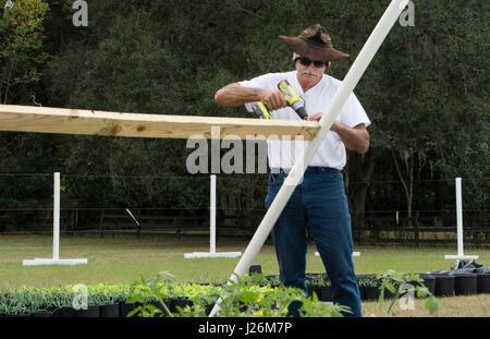 Florida centrale edificio uomo home organico giardino con piante e verdure in cortile per una sana dieta e mangiare Immagini Stock