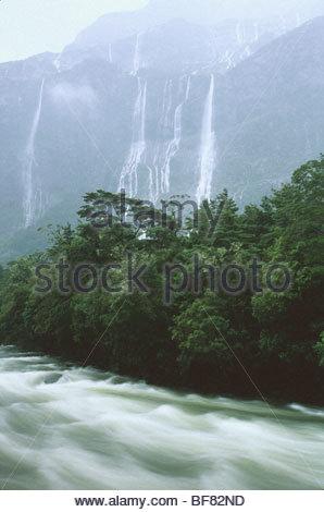 Pioggia-fiume gonfio, Milford Sound, Parco Nazionale di Fiordland, Nuova Zelanda Immagini Stock