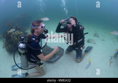 Subacquei eseguire la cancellazione maschera competenze nelle acque poco profonde di stingray city, Grand Cayman Immagini Stock