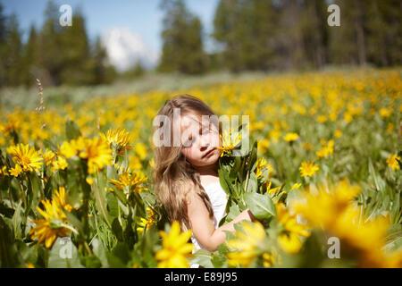 Ragazza nel campo dei fiori di campo Immagini Stock