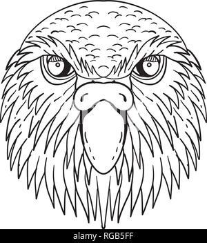 Disegno stile sketch illustrazione della testa di kakapo, notte parrot o owl parrot, una specie di flightless, notturno, terra-abitazione pappagallo endemico Immagini Stock