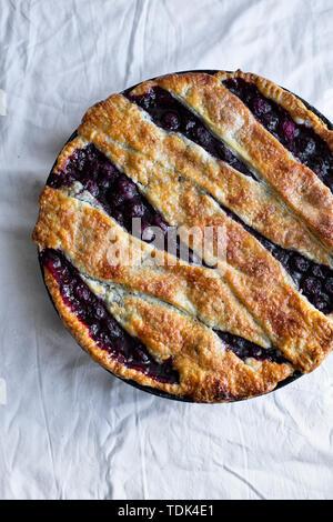 Torta di ciliegie con un reticolo e crosta in scaglie Immagini Stock