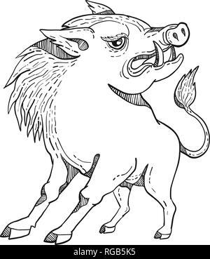 Doodle arte illustrazione di un razorback, maiale selvatico Cinghiale o Maiale guardando a lato su sfondo isolato fatto in bianco e nero in stile caricatura. Immagini Stock