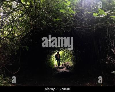 Un turista passeggiate nella foresta in Sierra di Grazalema, Andalusia, Spagna Immagini Stock
