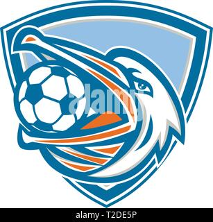 Illustrazione di una testa di un pellicano uccello con il calcio o il calcio palla in bocca alla ricerca fino al lato impostato all'interno della protezione crest fatto in stile retrò. Immagini Stock