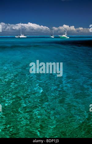 Sud Pacifico, Polinesia francese, Bora Bora Lagoon, barche a vela Immagini Stock