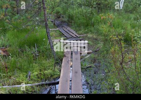 Il vecchio ponte di piccole dimensioni attraverso un fiume in una foresta Immagini Stock
